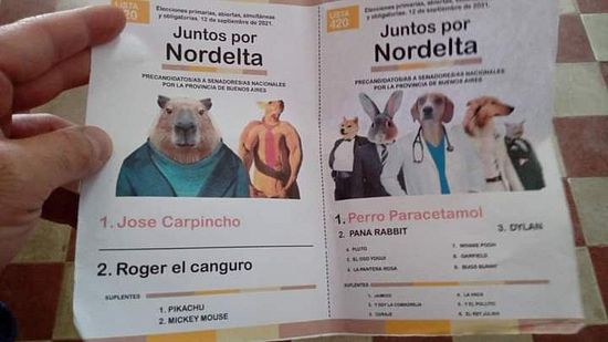 Los votantes más pelot... Locos de las PASO 2021! published in Offtopic