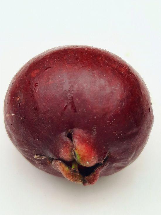 El Arazá rojo o Guayaba fresa es un frutal nativo delicioso! published in Offtopic