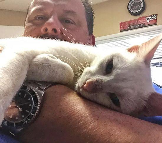 Gata lleva a sus gatitos al hombre que la ayudó y le dio comida published in Offtopic